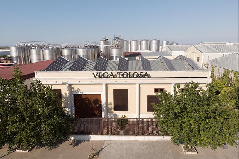 Vino Denominación de Origen Manchuela: Pagos de Familia Vega Tolosa