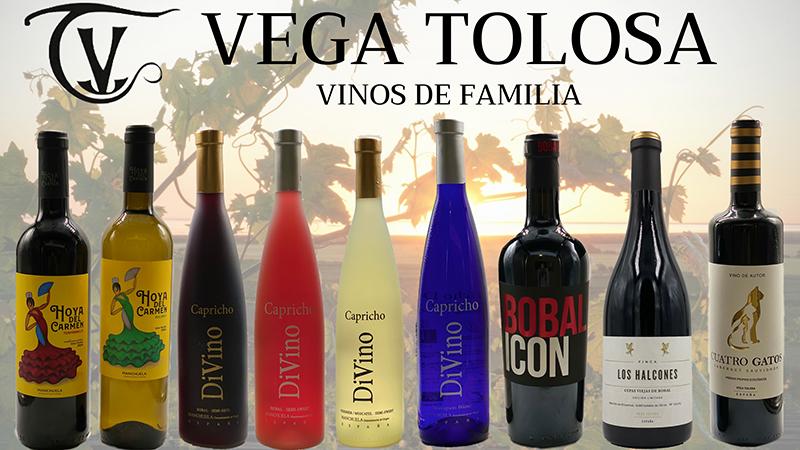 Algunas de las marcas de vino de Vega Tolosa