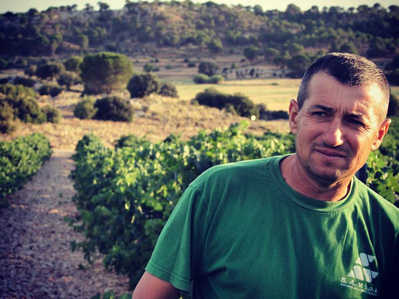 Mihai Ienei se encarga de mimar todas las viñas de la finca