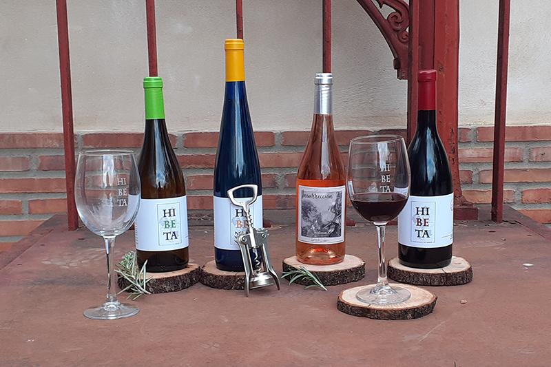El vino elaborado en Bodegas González Cabezas
