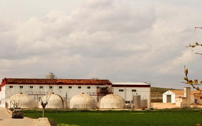 Vino Denominación de Origen Manchuela: San Isidro de Alborea