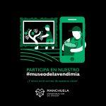 La Denominación de Origen Manchuela abre su Museo Digital de la Vendimia. ¡Participa con nosotros!
